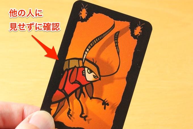 ゴキブリポーカー
